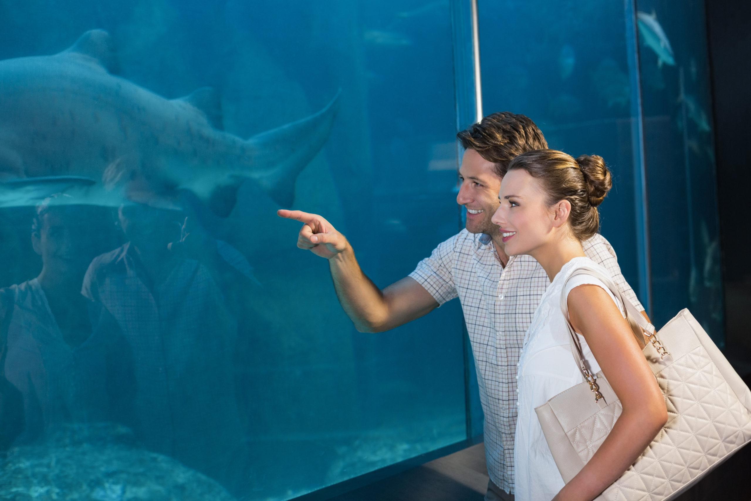 Happy,Couple,Looking,At,Fish,Tank,At,The,Aquarium