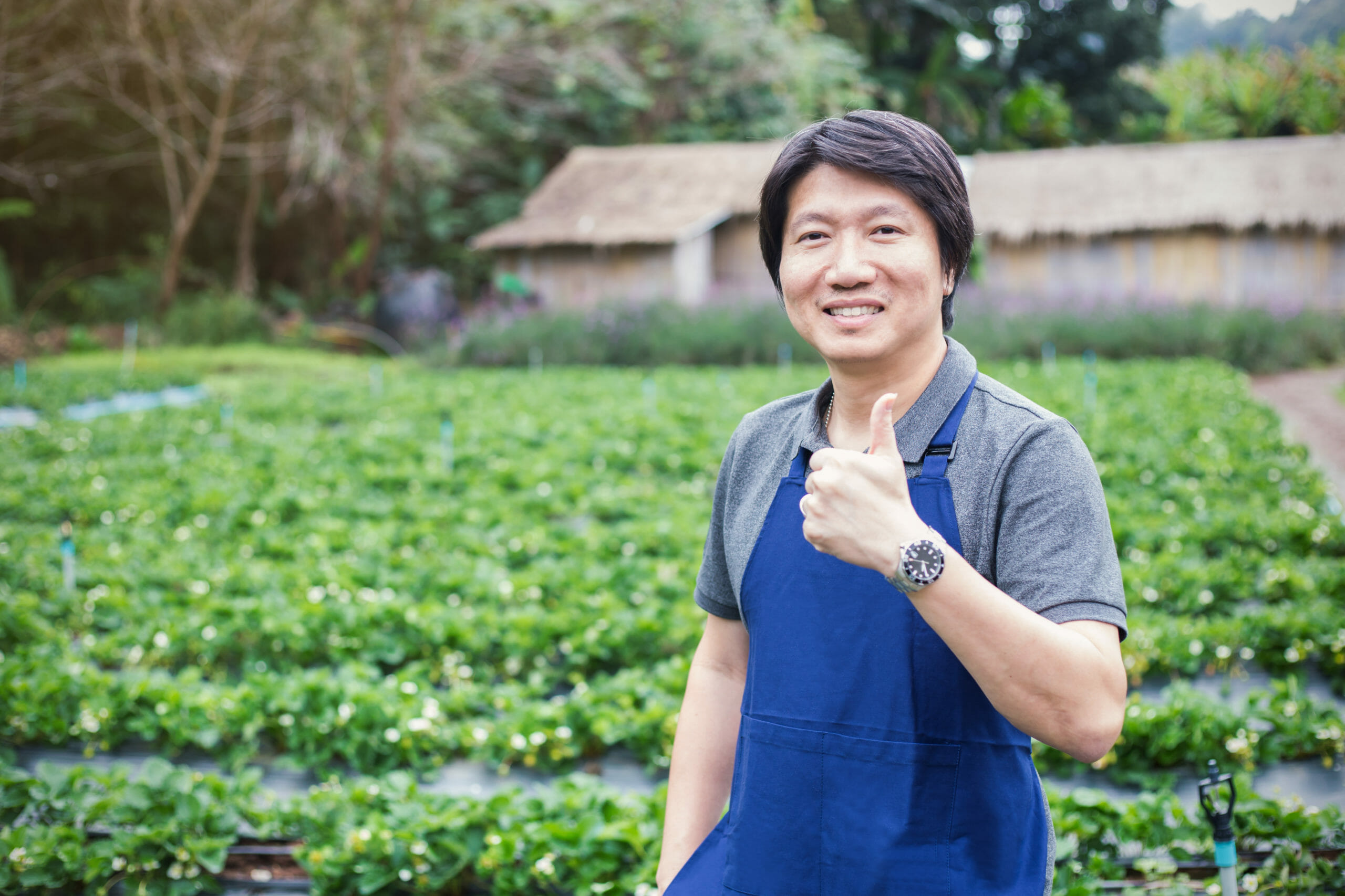 happy-owner-asian-man-working-gardening-789781606