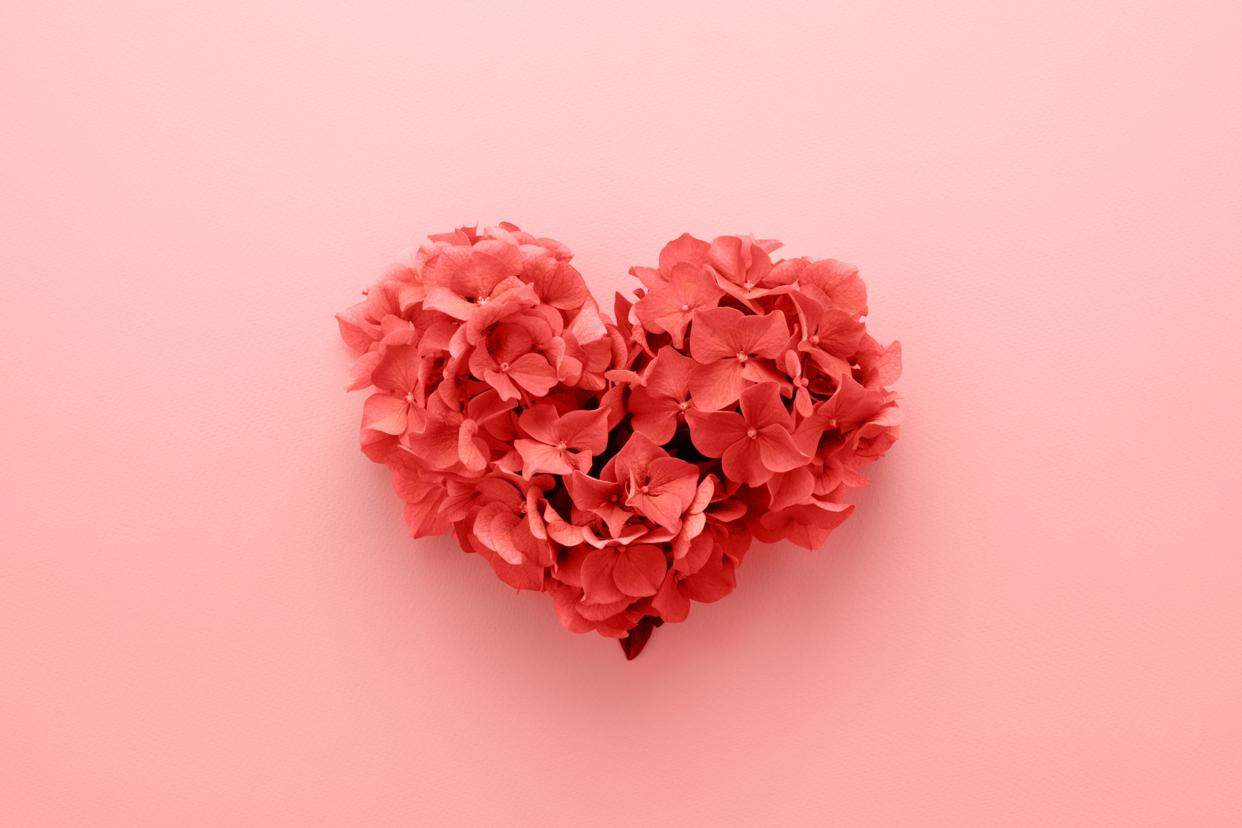 living-coral-color-year-2019-heart-1250940526
