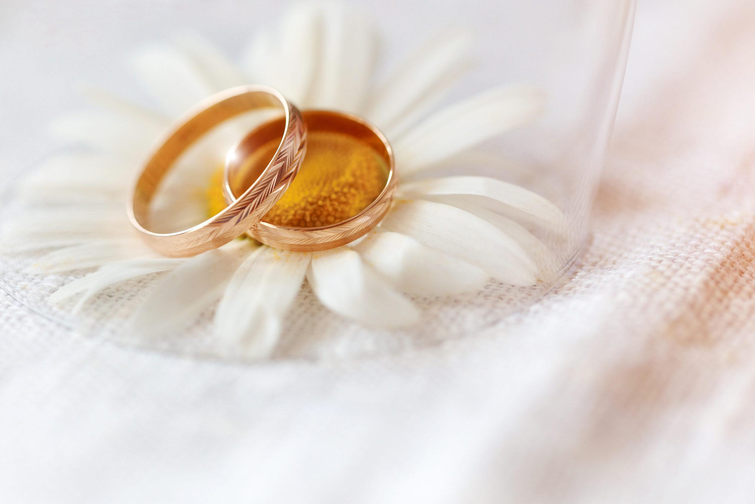 wedding-rings-wildflowers-daisies-concept-weddings-655799839